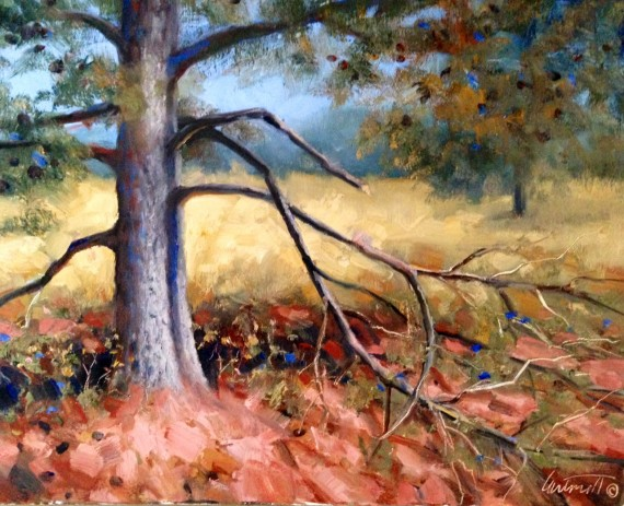 Old Pines Oil Painting