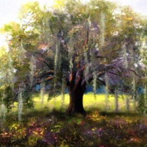 Live Oak Tree Painting
