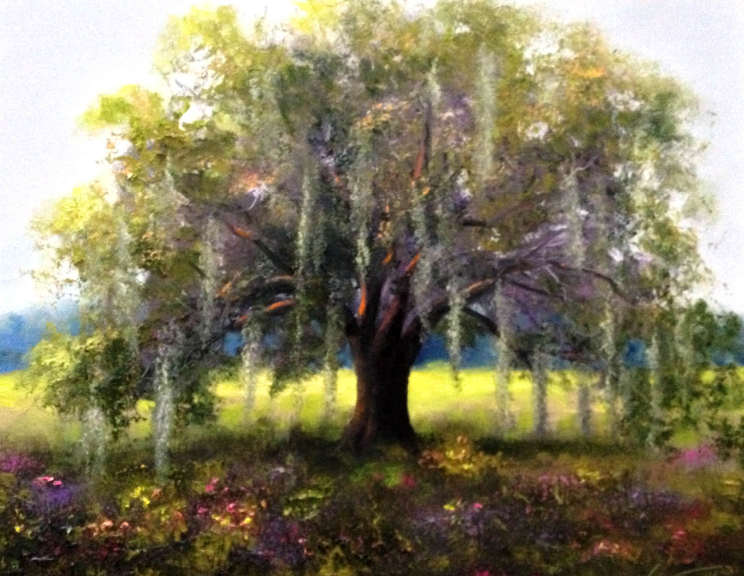 Live Oak Tree Painting