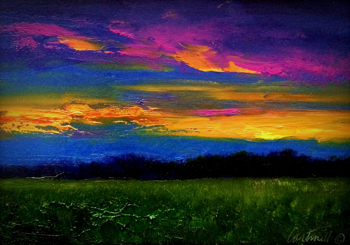 Night Painting Field Study