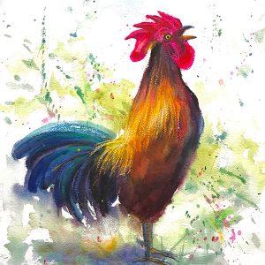 Brenda's Rooster