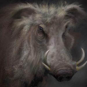 warthog art print