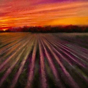 Delta Evening